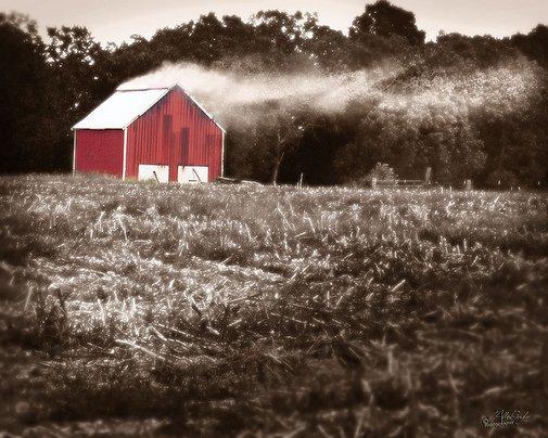 Dark-Fired Tobacco Barn