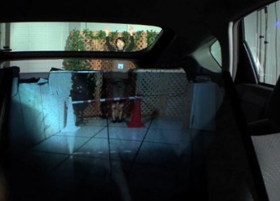 Optical camouflage turns car's back seat transparent