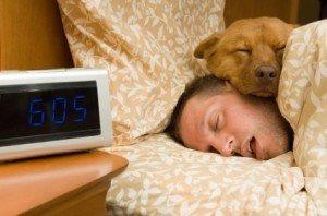 Sleep Cycle: This App Will Help You Sleep