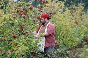 Old Timey Dave Goes From Ciderhouse Map To Much, Much More