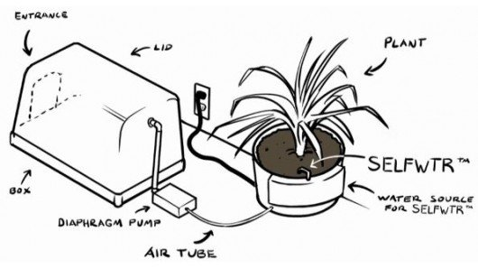 Purrfect Air system uses a plant to eliminate kitty litter odors