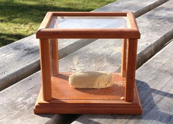 World's Oldest Twinkie Has Barely Aged in 36 Years
