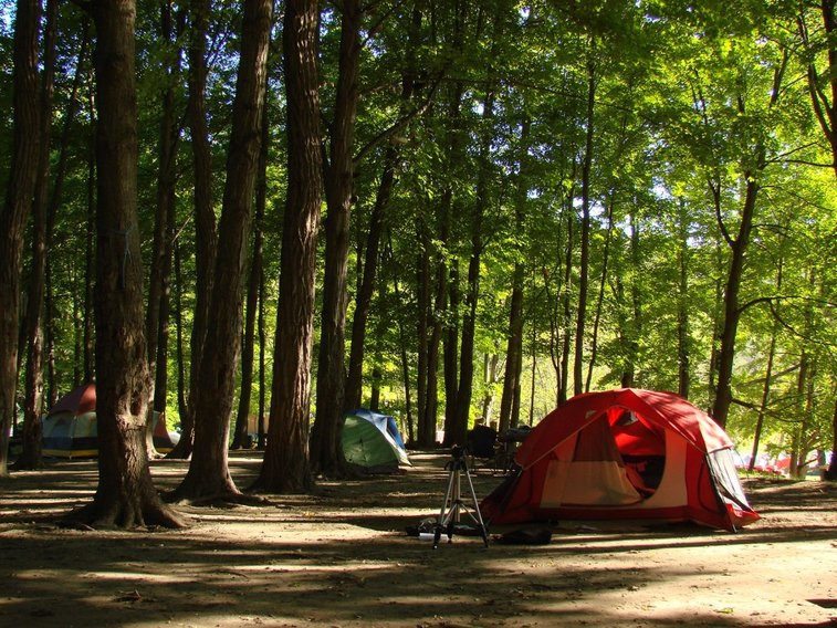 Camping Tips To Make Your Trip More Rewarding