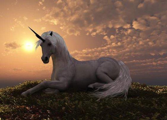 """Unicorn Lair"" discovered in North Korea"