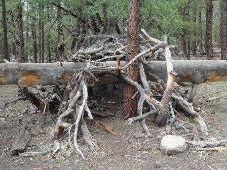How to Build a Survival Shelter When Lost
