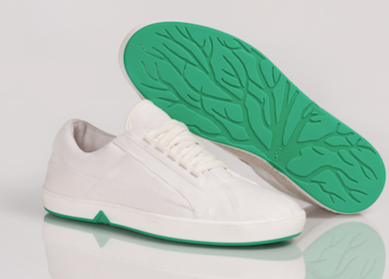OAT Biodegradable Shoes — The Man's Man