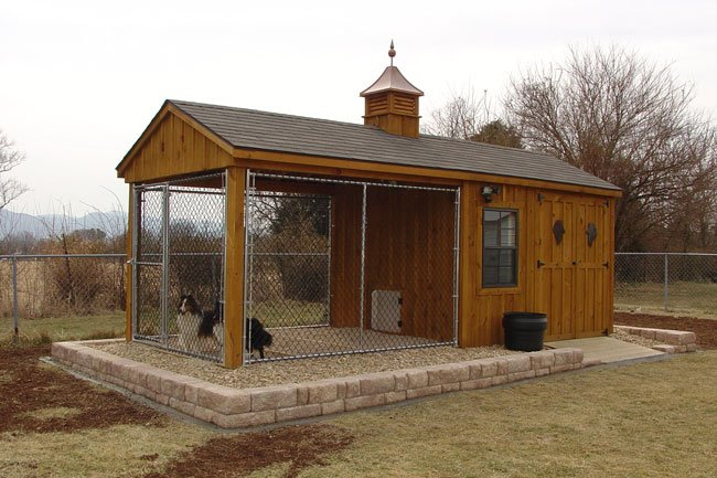 Dog Kennel And Shed Combo Gentlemint