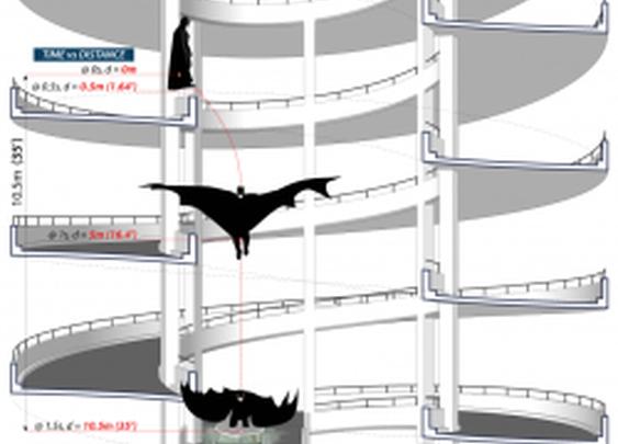 Batman Physics