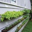 Armchair gardening