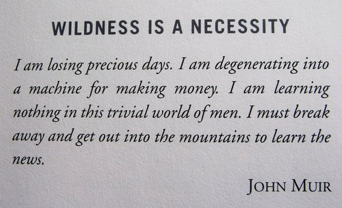 Wildness Is A Necessity