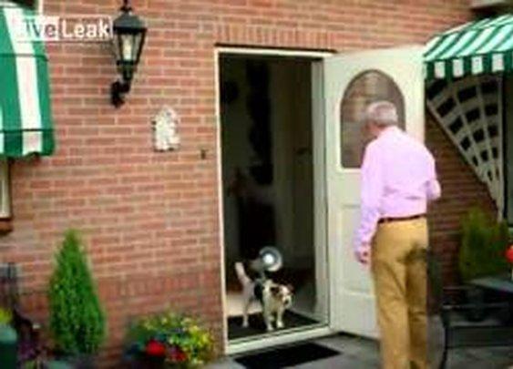 Anti-Burglary Device From Holland
