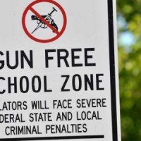 9 Must-See Gun Control Statistics Independent Journal Review