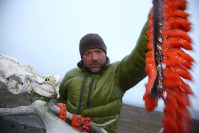 Les Stroud on Eating for Survival