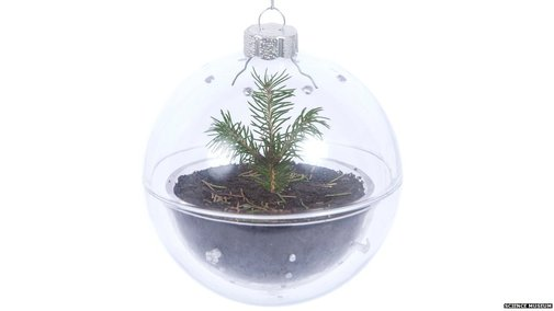 Big Picture: 'Bio-bauble' is next year's Christmas tree