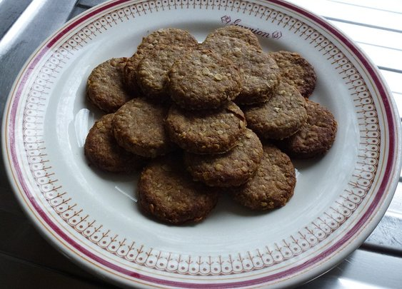 Sardine oatcake recipe for dogs