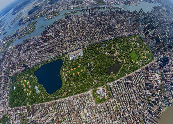 Stunning image of New York City's Central Park