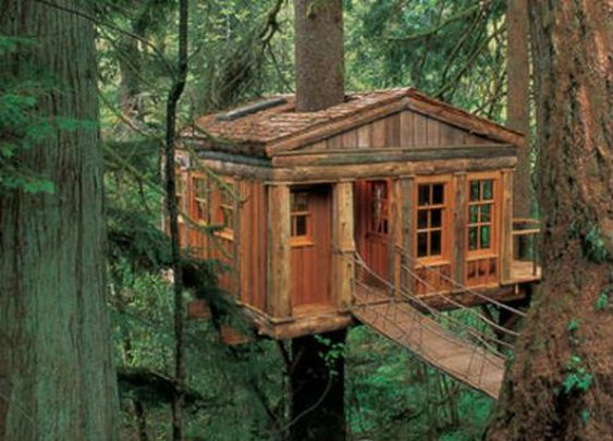 Tree Houses Are Naturally Amazing