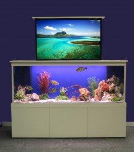 Fresh design concept: TV concealing aquarium    Fresh Design Blog