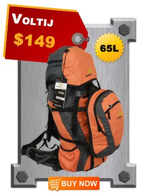 Amazing deal - this bag and any other bags they have are only $65!