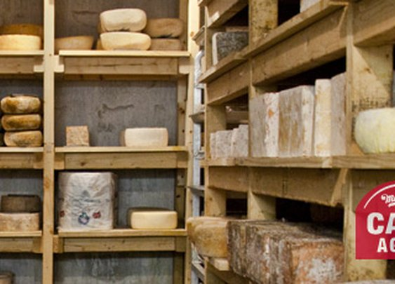 Murray's Cheese - Cheese Caves