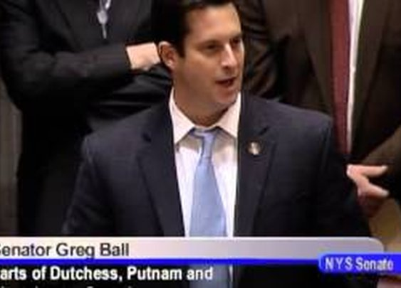 Senator Greg Ball session comments - 1/14/13 - NY Gun Ban