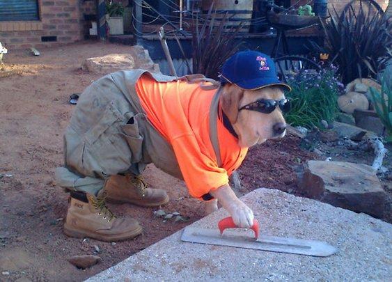 Honest Contractor