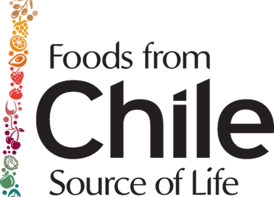 Foods from Chile Next Top Blogger Contest