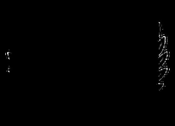Delmonico's Restaurant Group