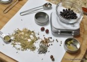 The Botanical Mystery Tour: A Review of The Homemade Gin Kit.