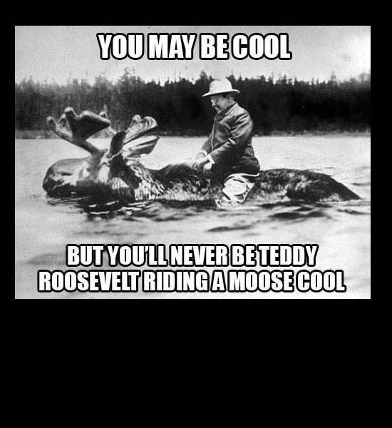 Teddy on a moose