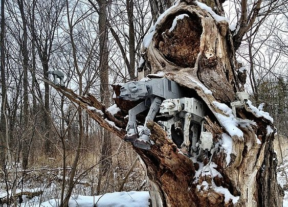 Stormtrooper Spots Pack of Wild AT-ATs in the Forest [Pic] | Geeks are Sexy Technology News