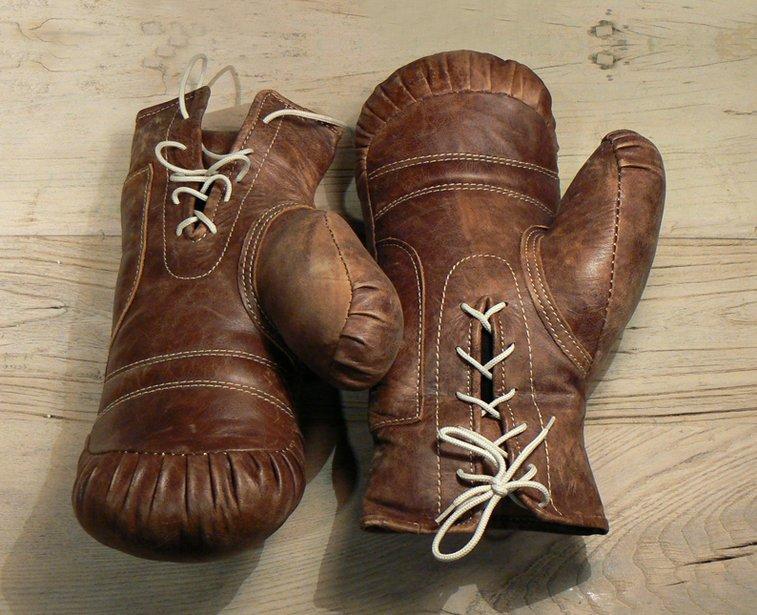 Vintage Boxing Gloves | That Should Be Mine