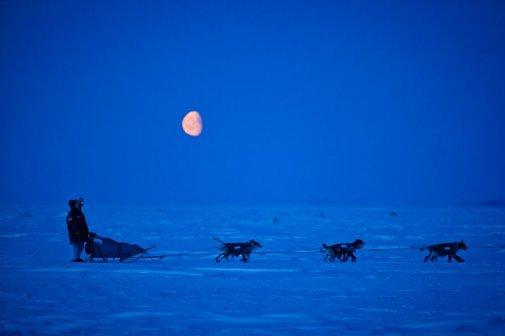 Alaska Dispatch's best photos of 2012 | Alaska Dispatch