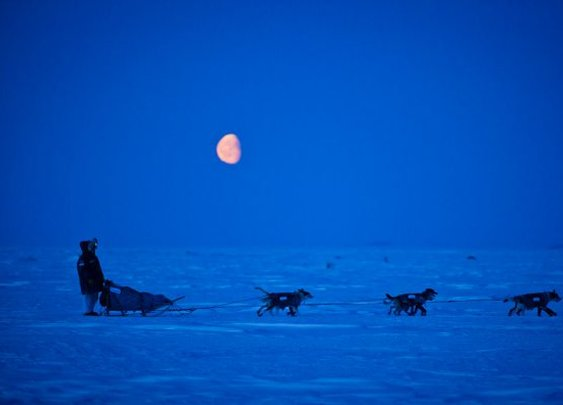 Alaska Dispatch's best photos of 2012 | Alaska Dispatch