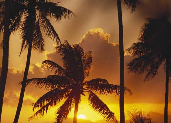 View Of Tahiti
