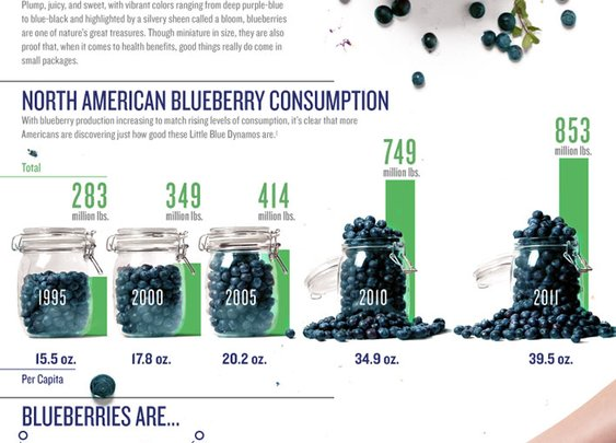 Blueberry Nutrition » US Highbush Blueberry Council