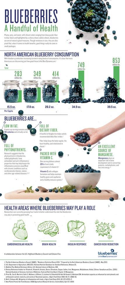 Blueberry Nutrition » US Highbush Blueberry Council