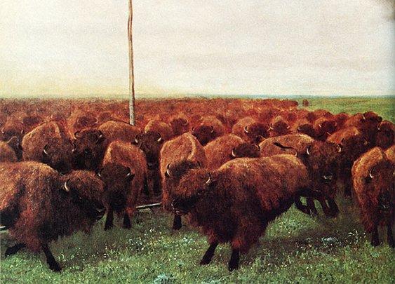 Huckberry | Buffalo Butt