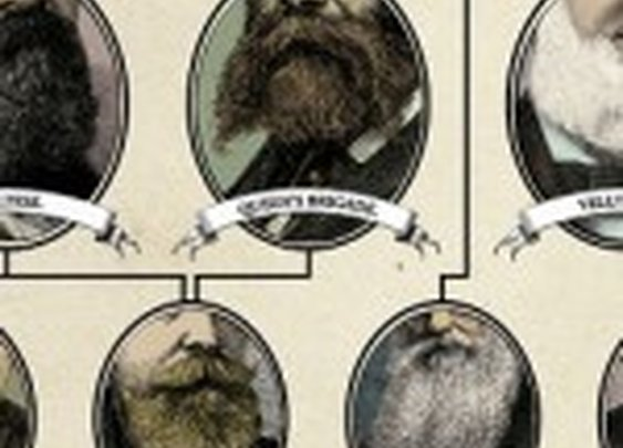 The Hierarchy of Beard & Moustache Charts
