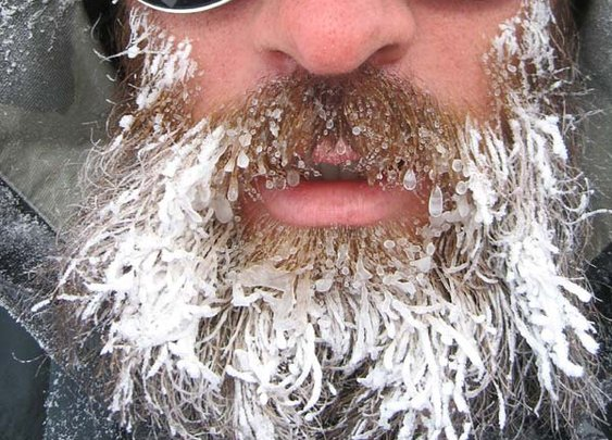 One Cool Beard Test