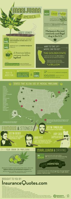 Marijuana in America [infographic]