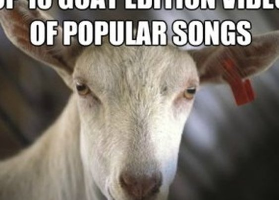 Top 10 Goat Edition YouTube Videos of Popular Songs