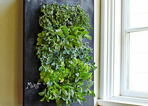 Chalkboard Vertical Wall Planter - The Green Head