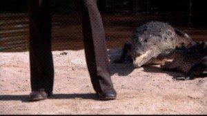 Survive a Crocodile Attack | Manly Adventure