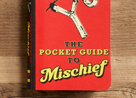 The Pocket Guide to Mischief Book | That Should Be Mine