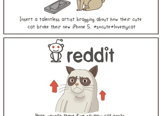 The State of Internet in 2013, Explained With Cats in pictures