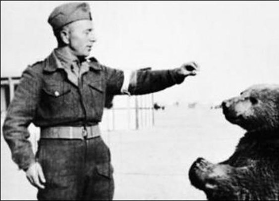 Private Wojtek – The Soldier Bear Who Fought Nazis in WW2   Oddity Central - Collecting Oddities