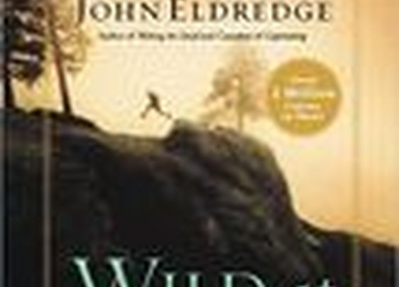 Wild at Heart: Discovering the Secret of a Man's Soul by John Eldredge