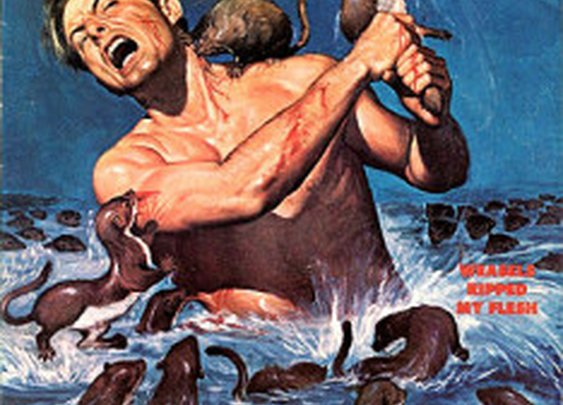 Weasels Ripped My Flesh – The Allure of Pulp Magazines | Manly Adventure