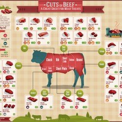 Cuts of Beef Cheat Sheet